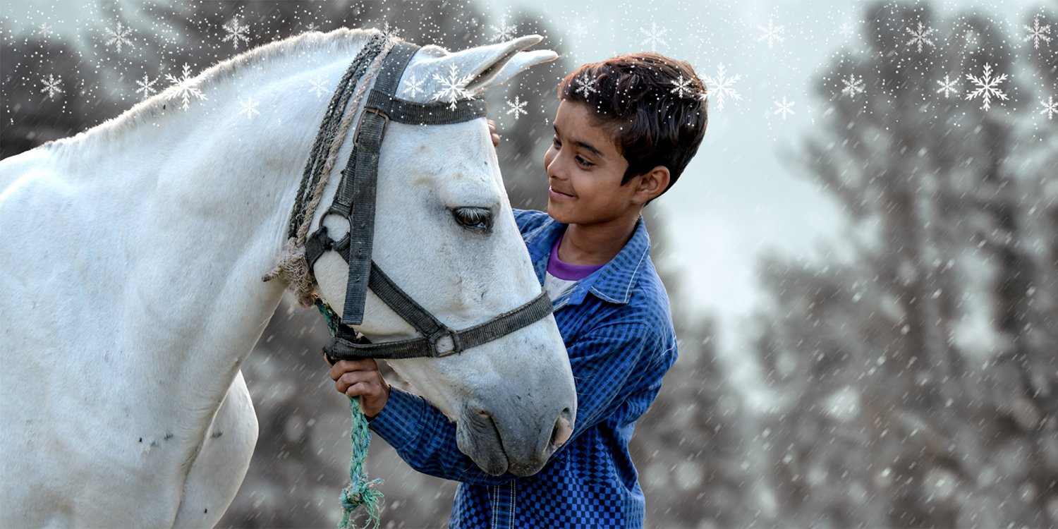 A boy and a horse together