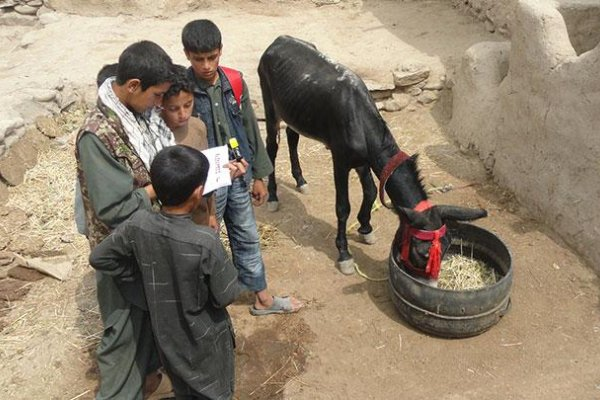 Village children receiving training in animal welfare and compassion