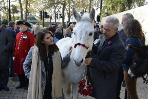 Aimee with Chico the mule from the British Mule Society
