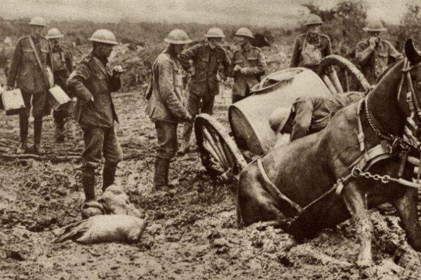 British horse sunk in mud