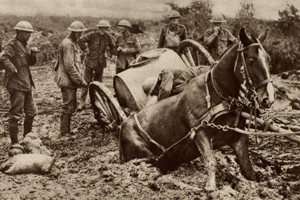 British war horse sinking in the mud