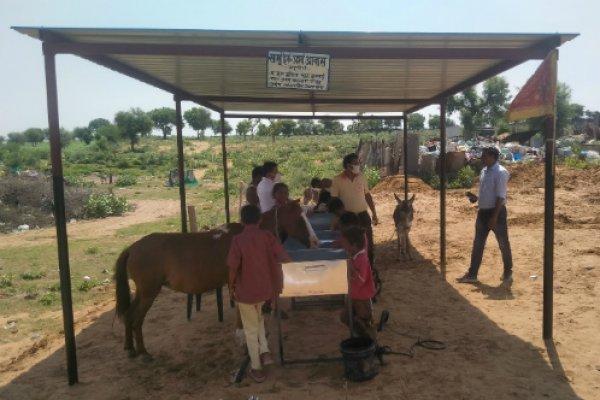 Temporary equine shelter in Churu, Rajasthan
