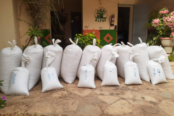 Seed distribution in West Africa