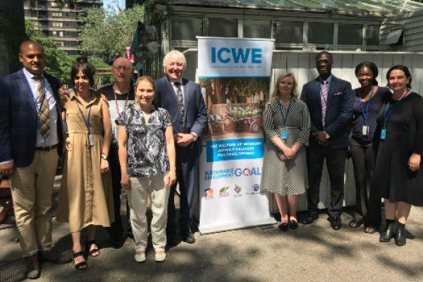 ICWE team