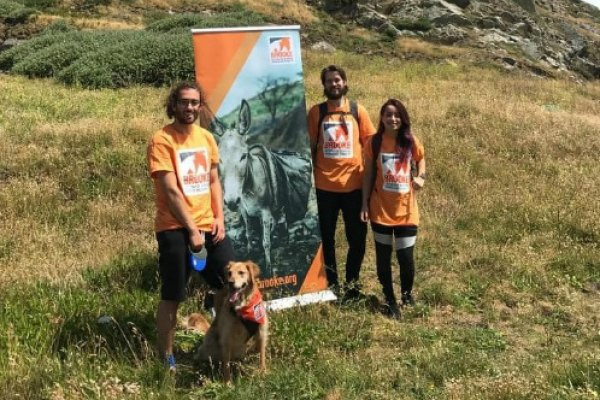 Group members take on a Cliff Path Challenge