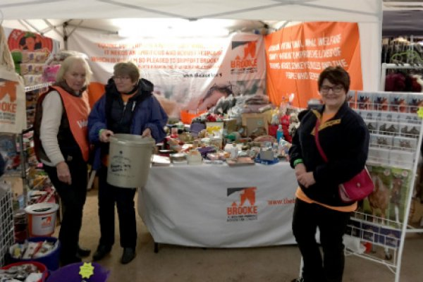 Lichfield group fundraisers at their Your Horse Live stand