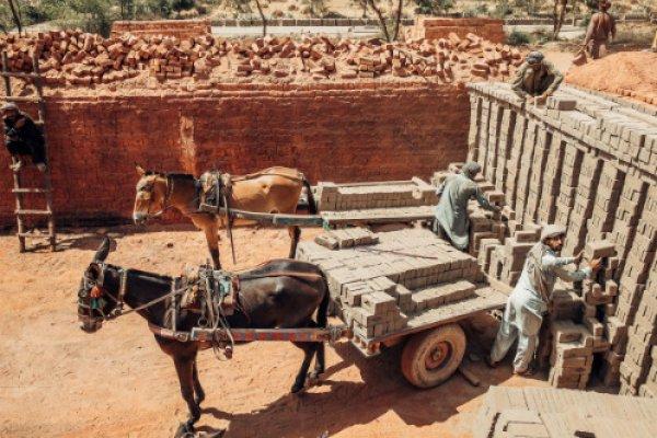 Pakistan brick kiln