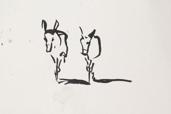 Sophie Walbeoffe's Donkey Sketch