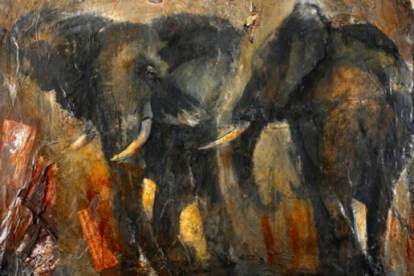 Sophie Walbeoffe's Fear of Poaching