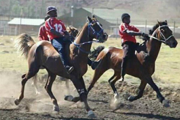 Men are seen taking part in bush racing