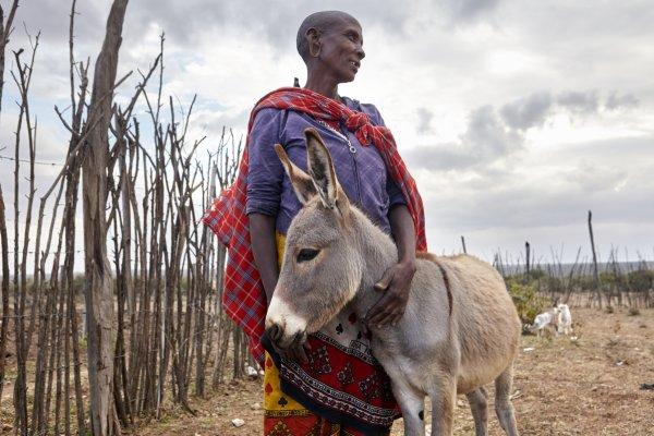 donkey and maasai woman
