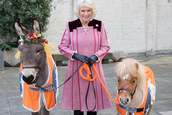 The Duchess of Cornwall with Ollie and Harry
