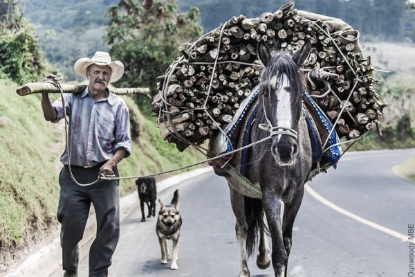 An owner with his working horse in Guatemala
