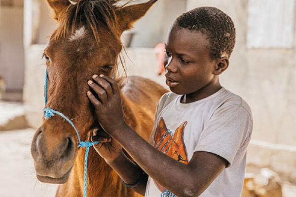 Senegal boy with horse