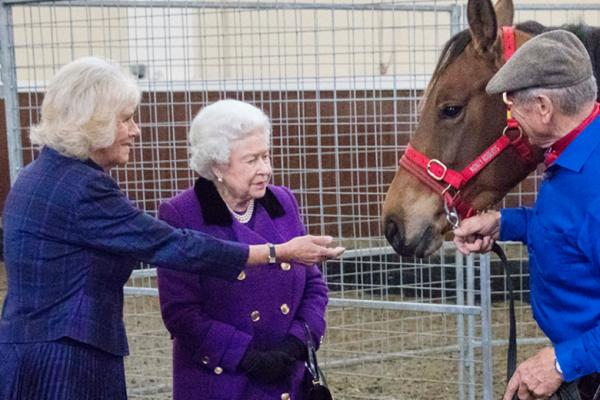 The Queen and Duchess of Cornwall meet Brooke ambassador Monty Roberts at our event at the Royal Mews in 2015