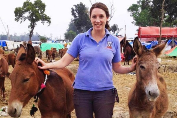 Kimberly Wells in the field with two donkeys