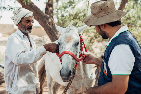 Men with horse in Pakistan