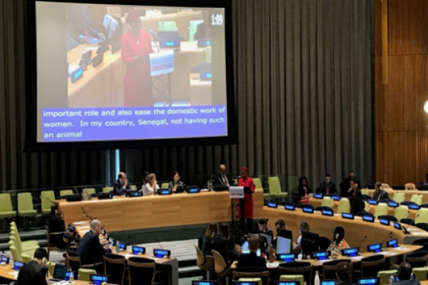 Rouguiatou delivers an oral statement during HLPF 2019 in New York