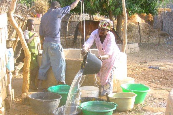 Eclosio in Senegal