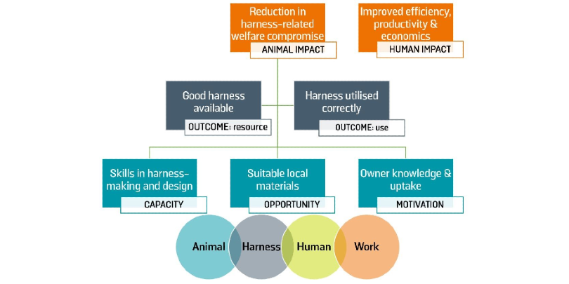 Human and animal impacts on harnessing
