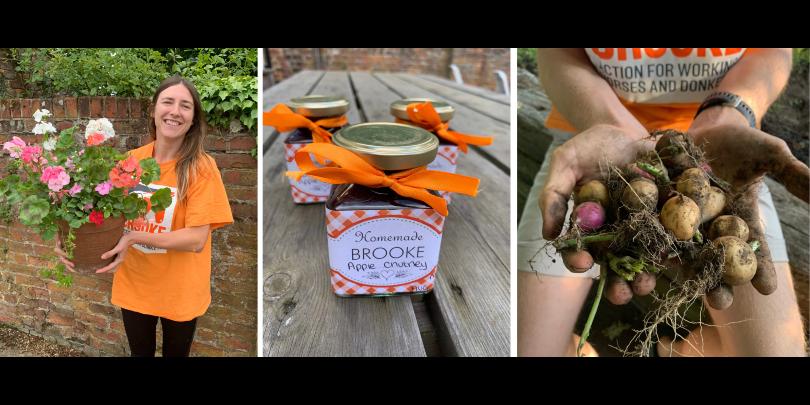 Bloom for Brooke