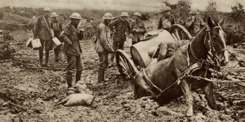 British horse sunk in mud