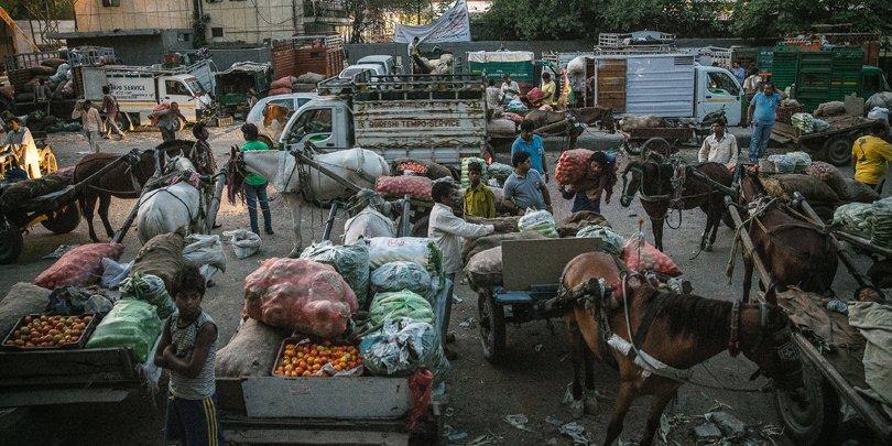 Horse and cart at food market