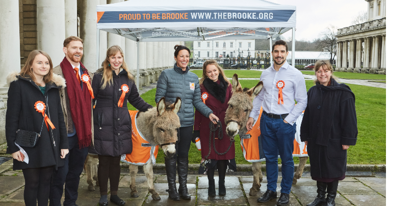 Brooke team with donkeys at Carol Service