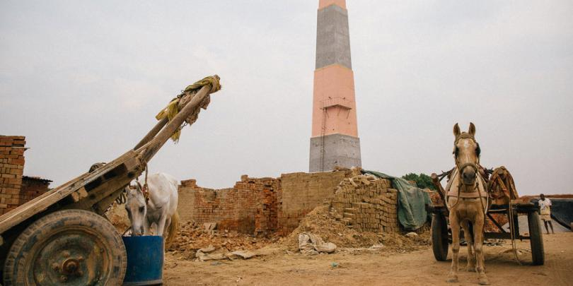 Equines waiting outside a brick kiln in India