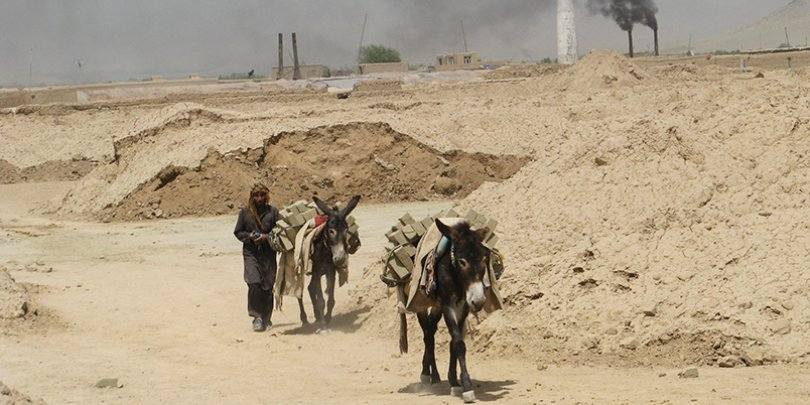Donkeys working at a brick kiln in Afghanistan