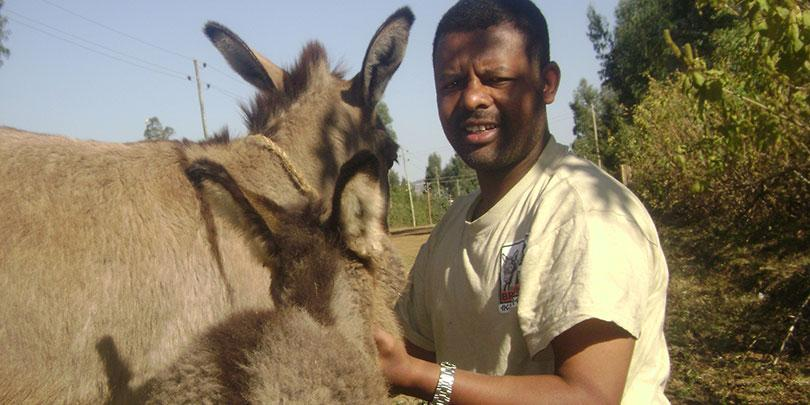 Alemayehu with donkey and foal
