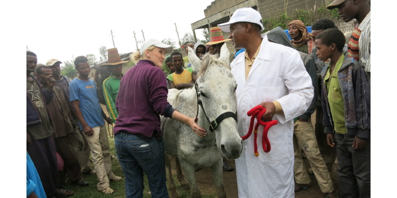 Ashleigh assessing a gharry horse with a vet in Ethiopia