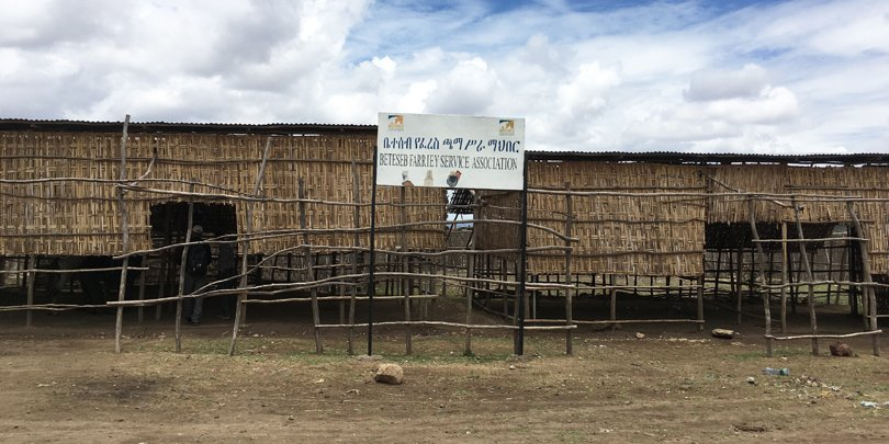 Shared working space for Brooke-trained farriers next to the Halaba shelter, Ethiopia