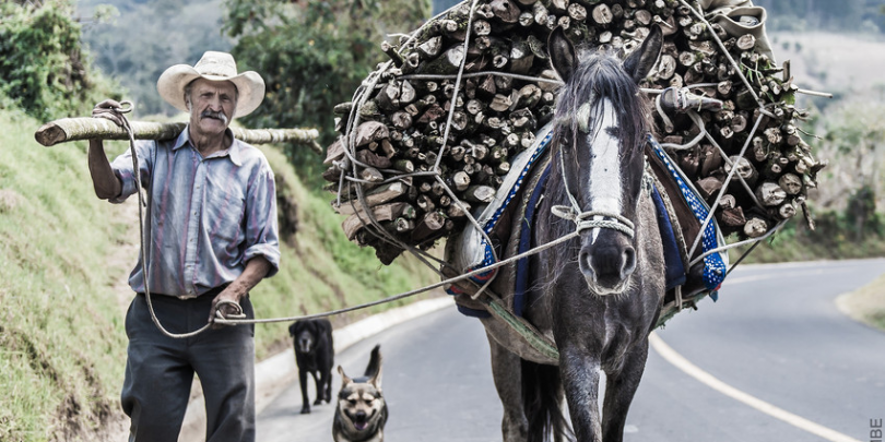 A horse and its owner transporting wood from a nearby forest. Credit/Copyright - Richard Dunwoody MBE