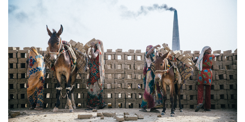 Mules prepare to pull carts of bricks at a kiln in India