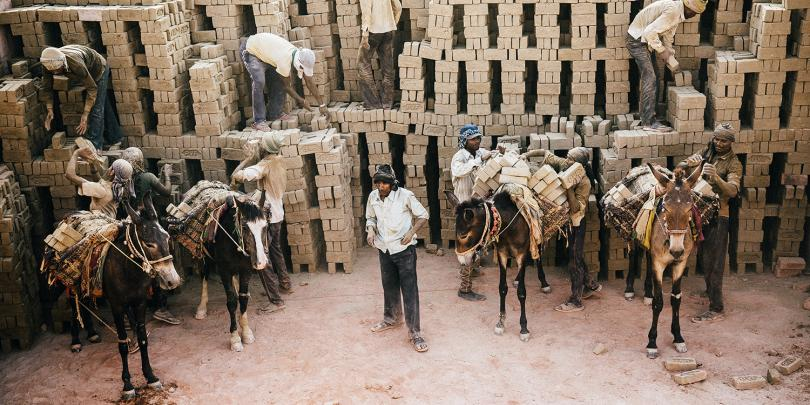 Donkeys working at brick kiln in India