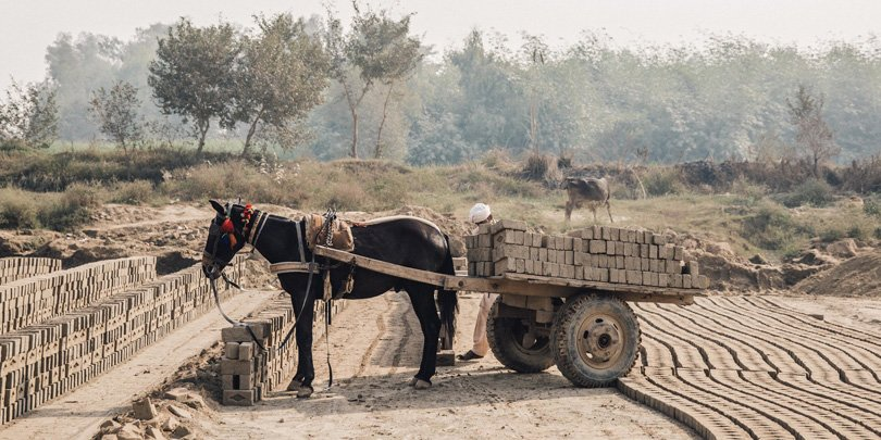 Horse and cart loaded with bricks in Pakistan