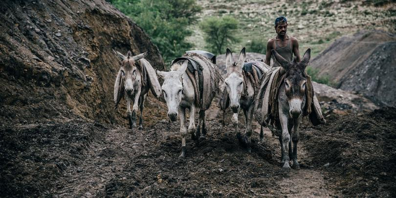 Four donkeys and their owner working a coal mine in Pakistan