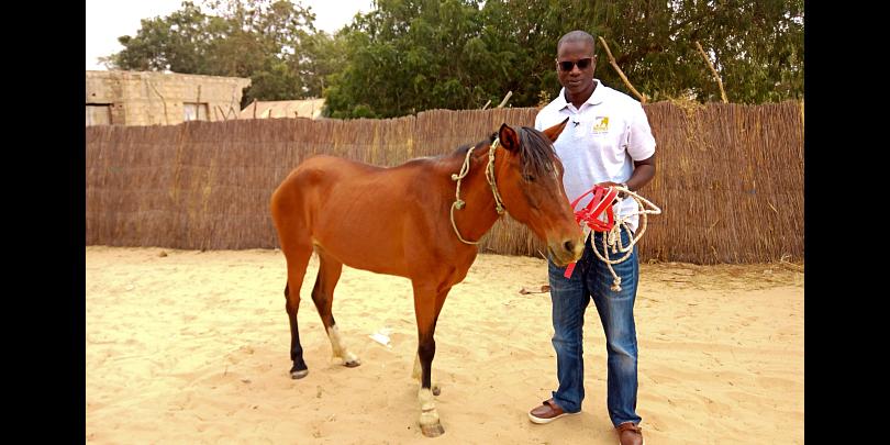 Dr Mactar Seck and horse in Senegal