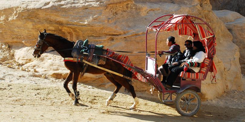 A horse pulling a carriage in Petra, Jordan