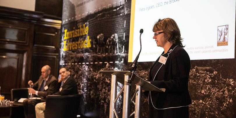Brooke Chief Executive Petra Ingram speaking at the Invisible Livestock conference