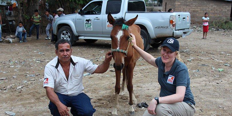 ESAP and Brooke hold humane handling workshop in Guatemala