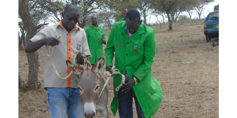 Dr Vincent Oloo with a donkey in Kenya