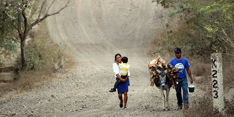 A family working with their donkey in Nicaragua