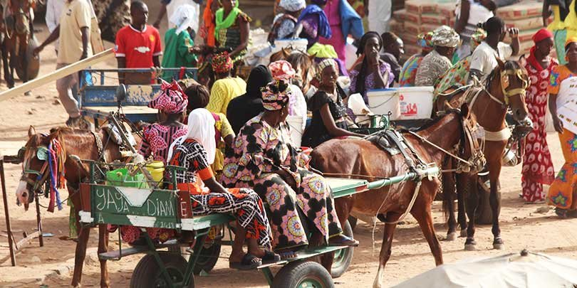 Horses transporting people, goods and building materials at a market