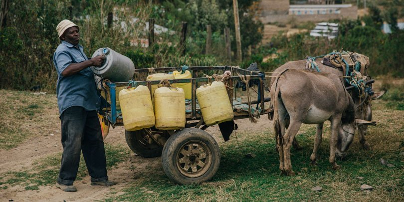 Donkey owner, Stephen Kimiri, loading his cart with water