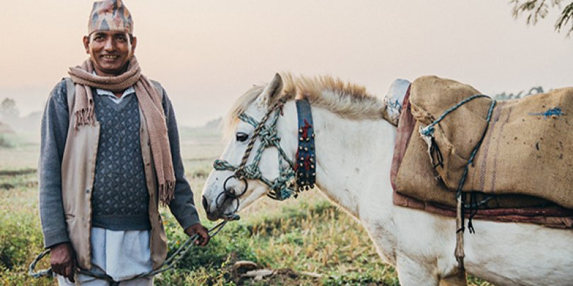 Nepal horse and owner
