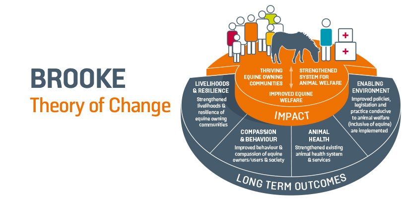 Brooke theory of change infographic