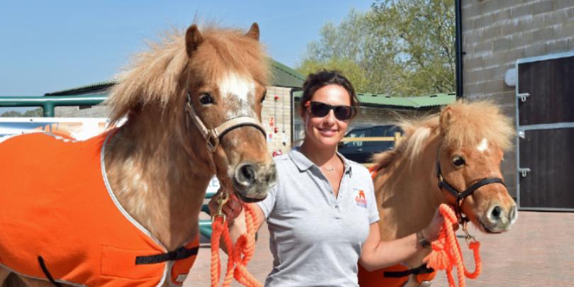 Brooke staff with miniature Shetland ponies