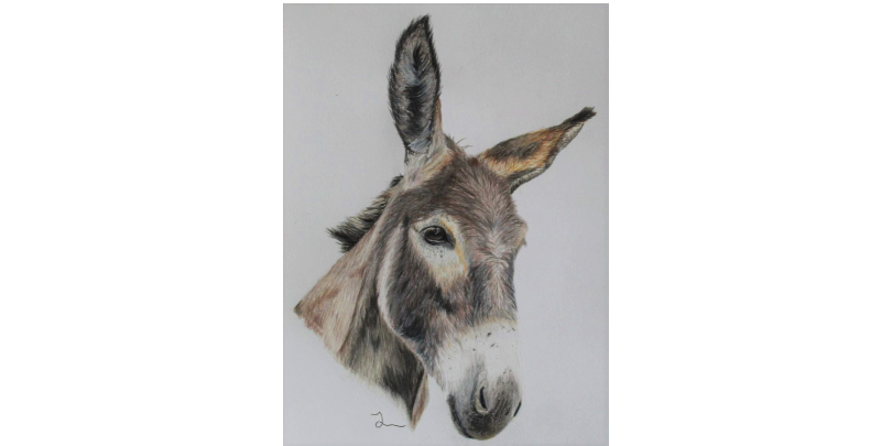 'I'M ALL EARS' by Jessica, age 13 (teen category)